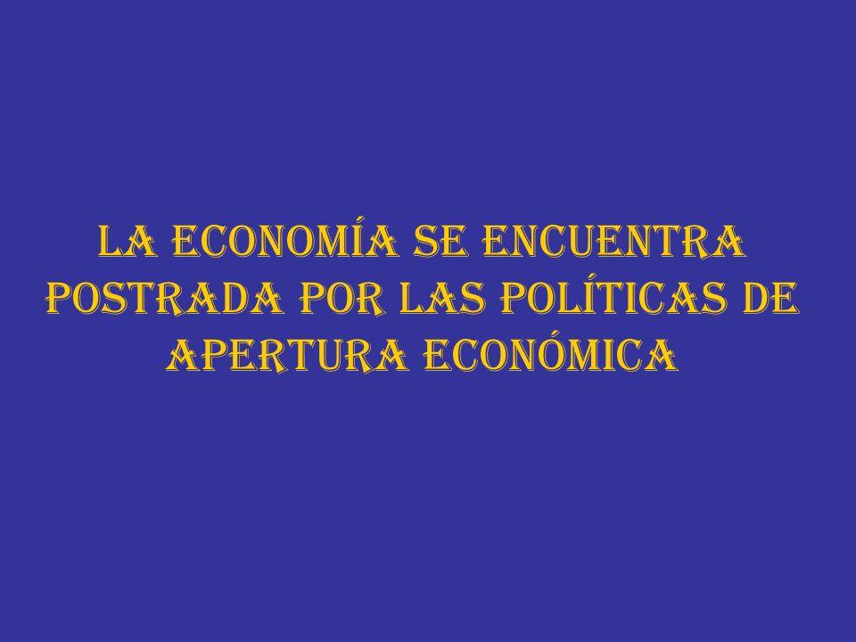 La economía se encuentra postrada por las políticas de apertura económica