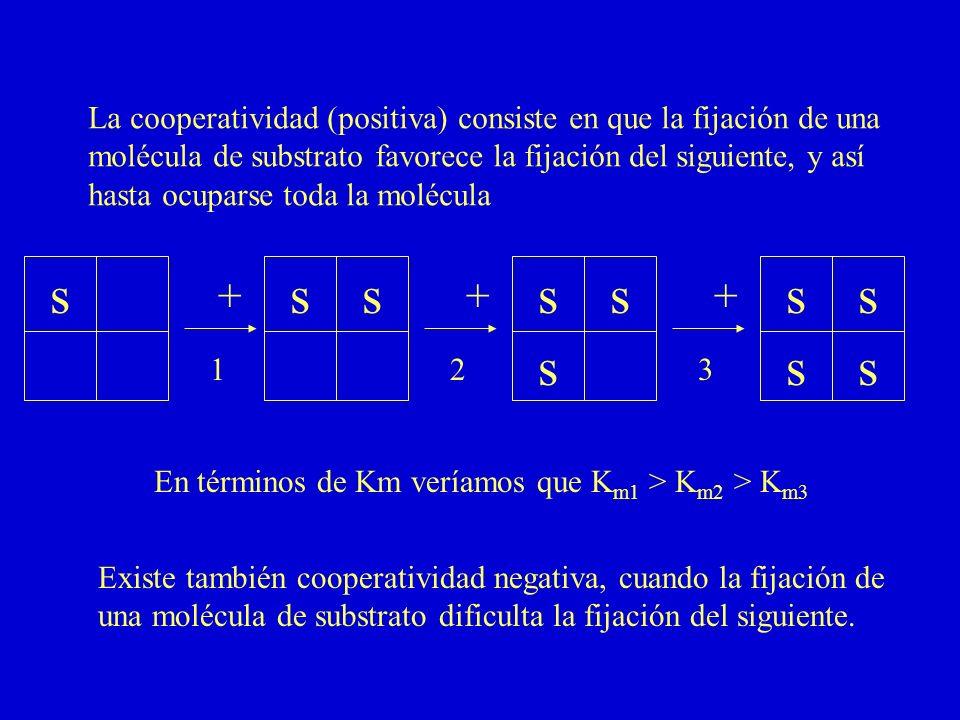 La cooperatividad (positiva) consiste en que la fijación de una