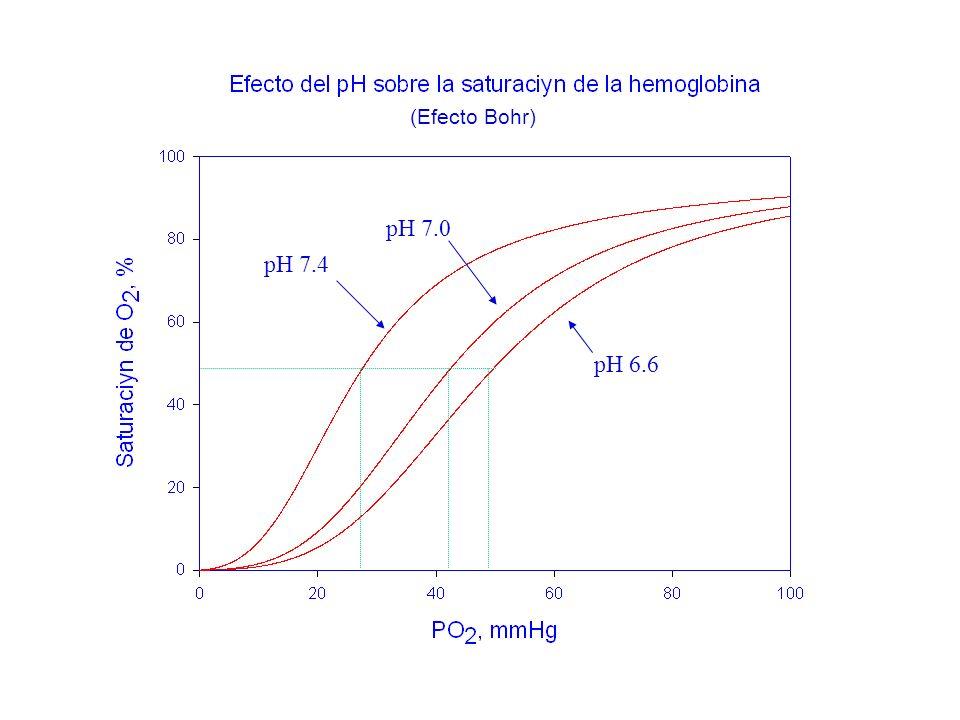 (Efecto Bohr) pH 7.0 pH 7.4 pH 6.6