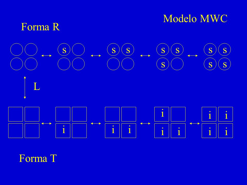 Modelo MWC Forma R s s s s s s s s s s L i i i i i i i i i i Forma T