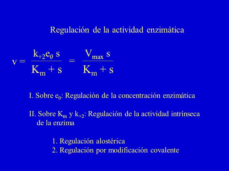 Km + s Km + s v = k+2e0 s = Vmax s