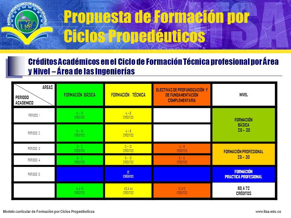 ELECTIVAS DE PROFUNDIZACIÓN Y DE FUNDAMENTACIÓN COMPLEMENTARIA