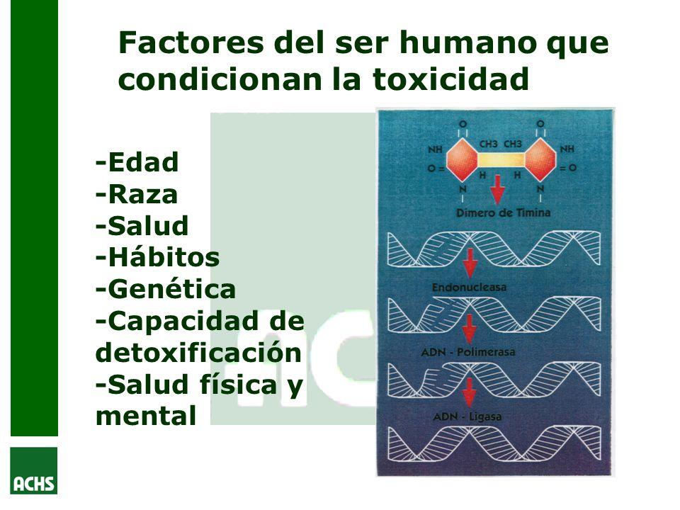 Factores del ser humano que condicionan la toxicidad