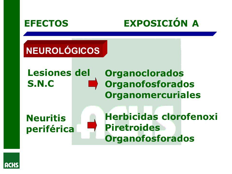 EFECTOS EXPOSICIÓN A. NEUROLÓGICOS. Lesiones del. S.N.C. Organoclorados. Organofosforados. Organomercuriales.