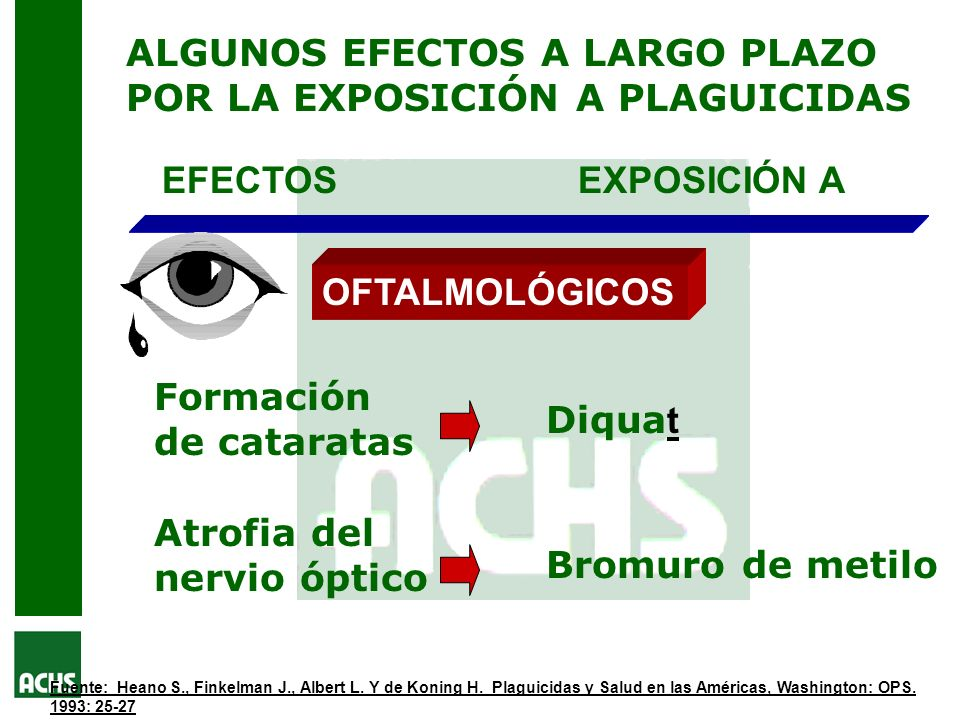 ALGUNOS EFECTOS A LARGO PLAZO POR LA EXPOSICIÓN A PLAGUICIDAS