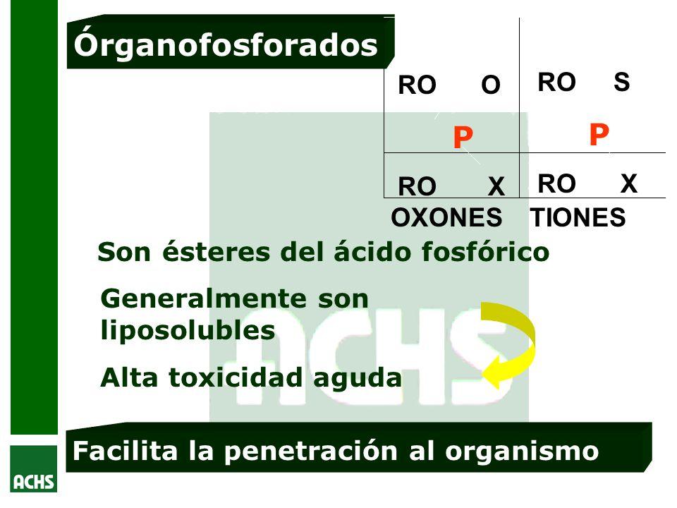 Órganofosforados RO O P RO X RO S RO X OXONES TIONES