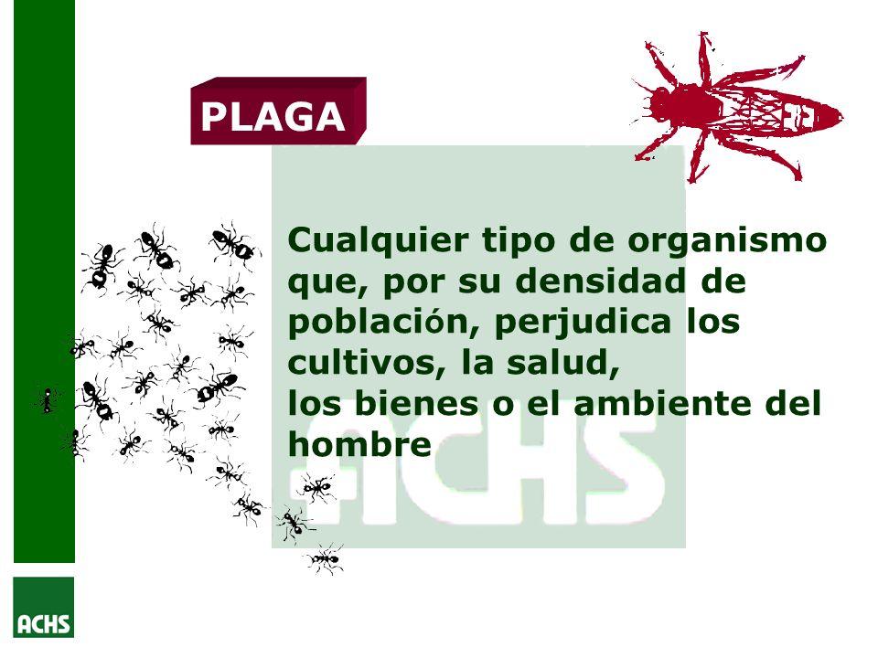 PLAGA Cualquier tipo de organismo que, por su densidad de