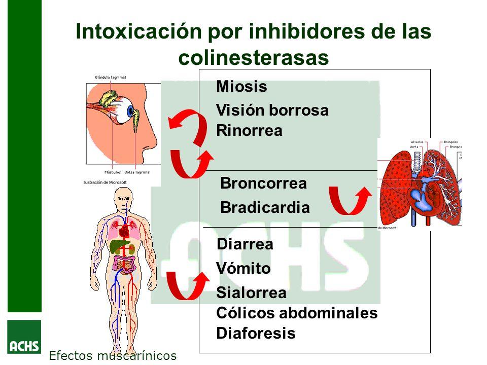 Intoxicación por inhibidores de las colinesterasas