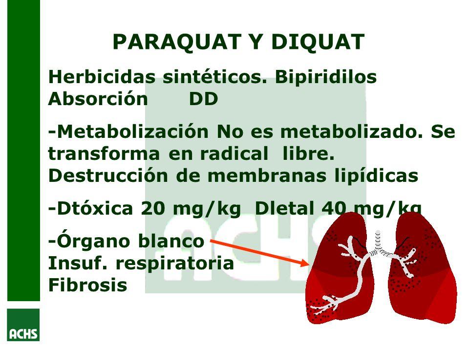 PARAQUAT Y DIQUAT Herbicidas sintéticos. Bipiridilos Absorción DD