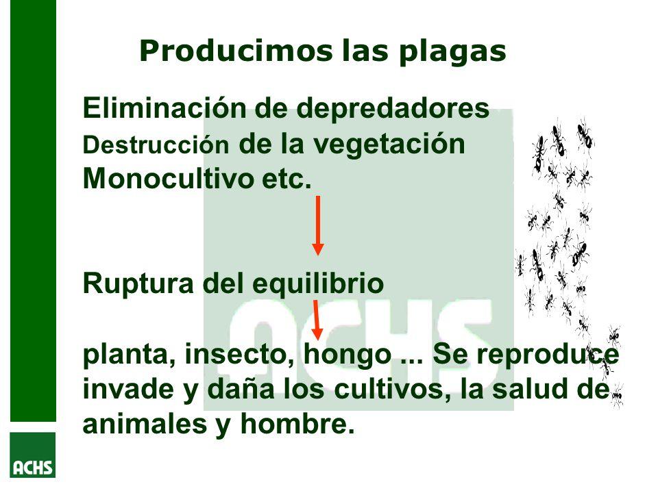 Eliminación de depredadores Monocultivo etc.