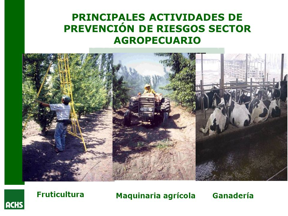 PRINCIPALES ACTIVIDADES DE PREVENCIÓN DE RIESGOS SECTOR AGROPECUARIO