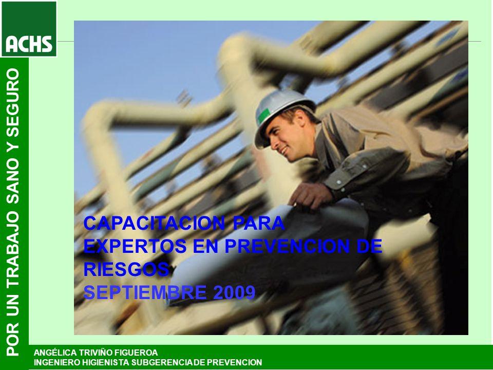 CAPACITACION PARA EXPERTOS EN PREVENCION DE RIESGOS