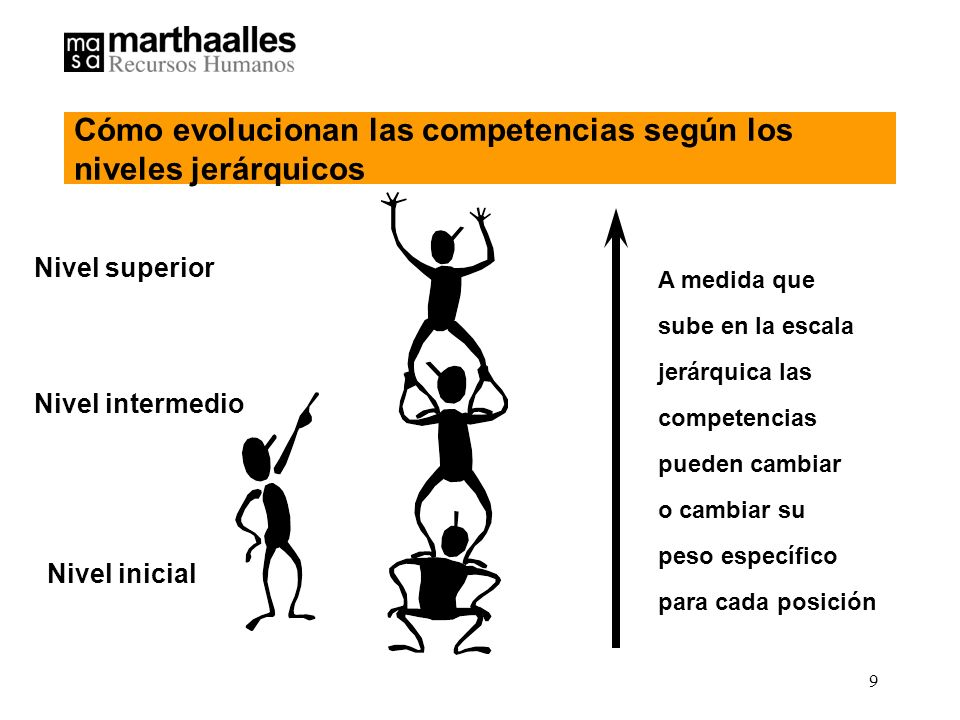Cómo evolucionan las competencias según los niveles jerárquicos