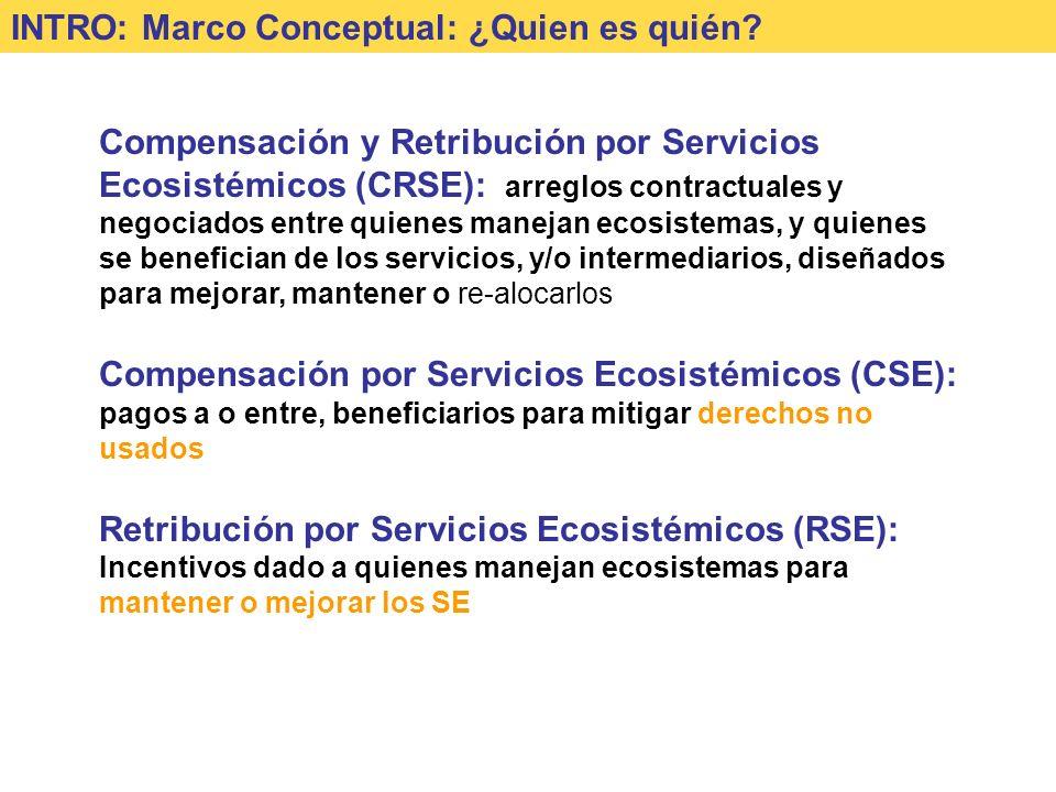 INTRO: Marco Conceptual: ¿Quien es quién