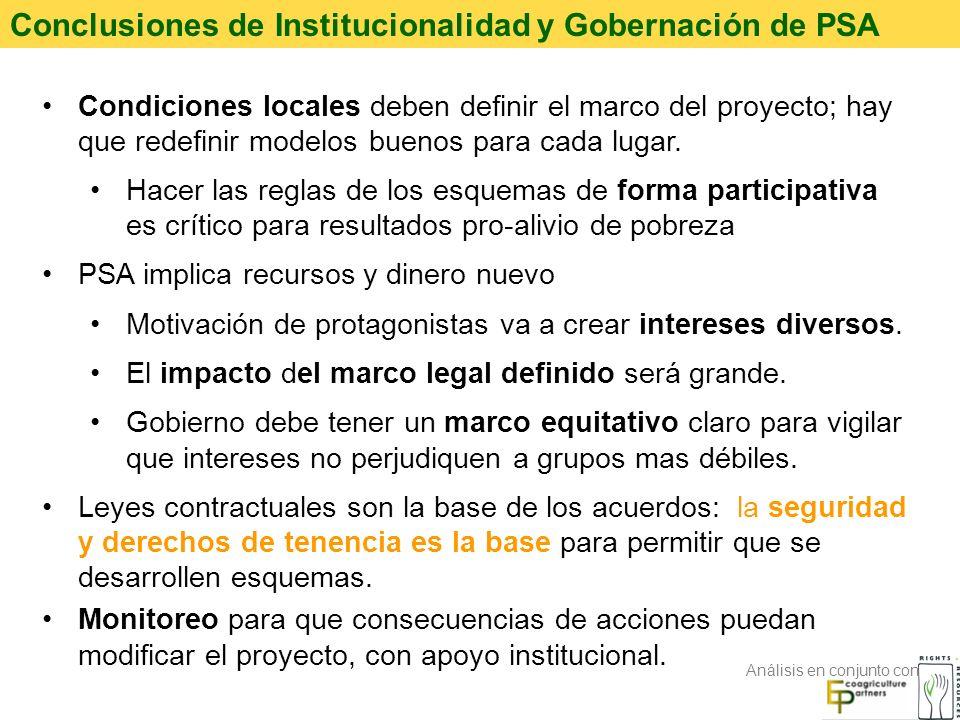Conclusiones de Institucionalidad y Gobernación de PSA