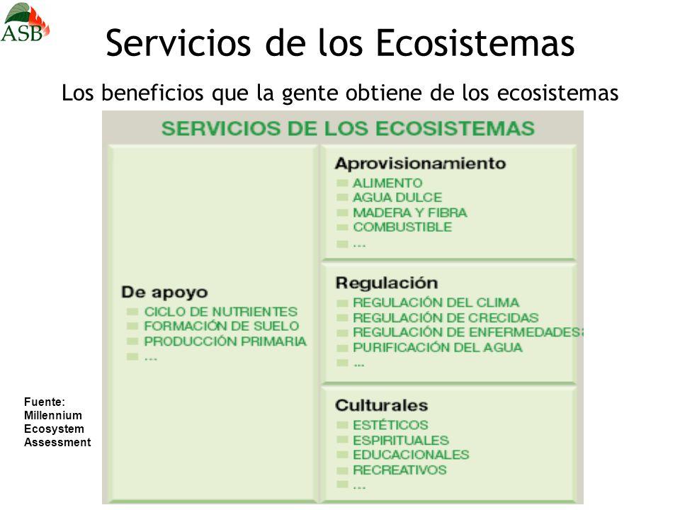 Servicios de los Ecosistemas Los beneficios que la gente obtiene de los ecosistemas