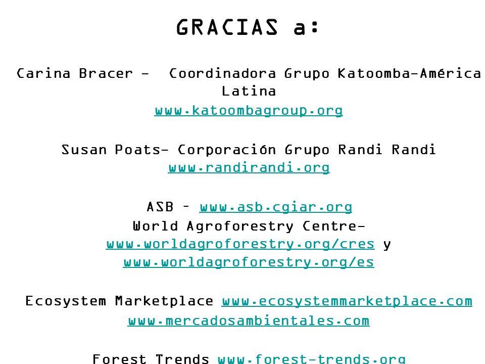 GRACIAS a: Carina Bracer - Coordinadora Grupo Katoomba-América Latina