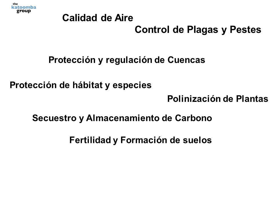 Calidad de Aire Control de Plagas y Pestes