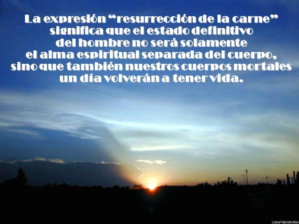 La expresión resurrección de la carne