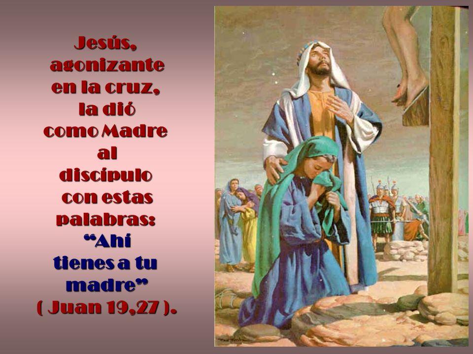Jesús, agonizante. en la cruz, la dió. como Madre. al. discípulo. con estas. palabras: Ahí.