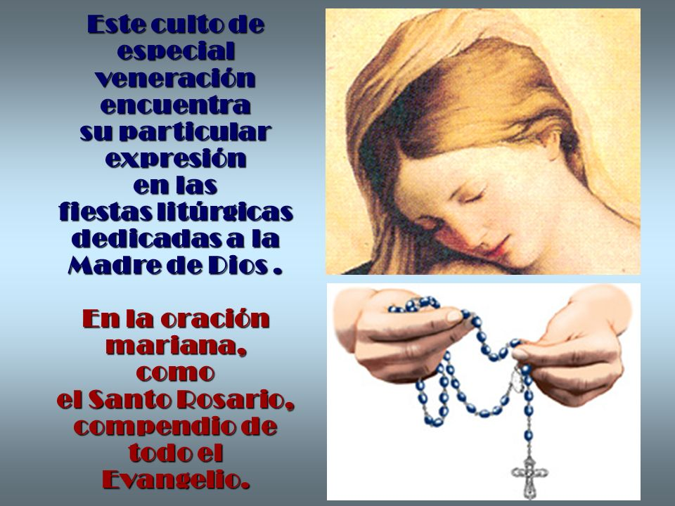 Este culto de especialveneración encuentra su particular expresión en las fiestas litúrgicas dedicadas a la Madre de Dios .