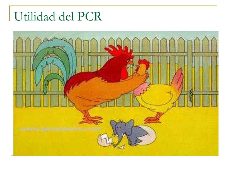Utilidad del PCR