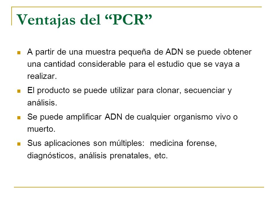 Ventajas del PCR A partir de una muestra pequeña de ADN se puede obtener una cantidad considerable para el estudio que se vaya a realizar.
