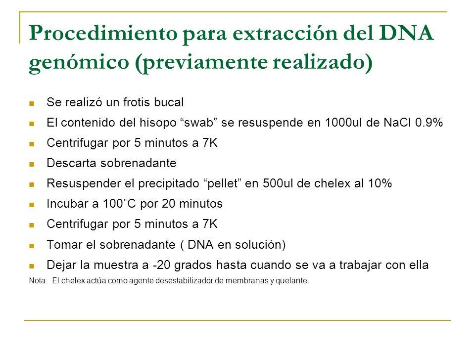 Procedimiento para extracción del DNA genómico (previamente realizado)