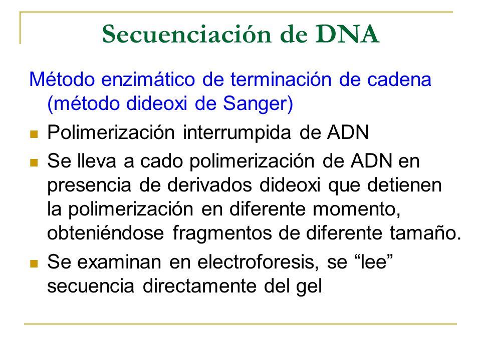 Secuenciación de DNA Método enzimático de terminación de cadena (método dideoxi de Sanger) Polimerización interrumpida de ADN.