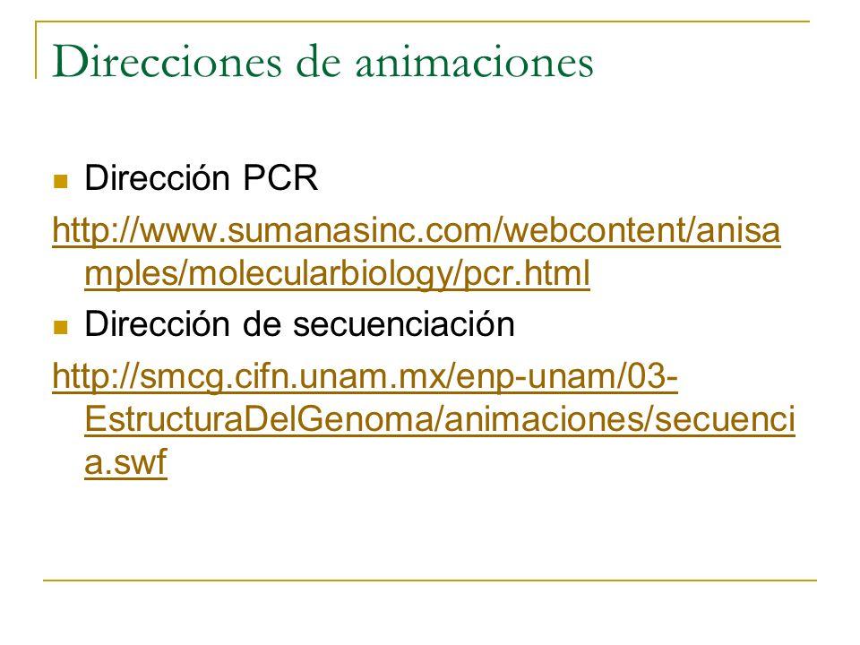 Direcciones de animaciones