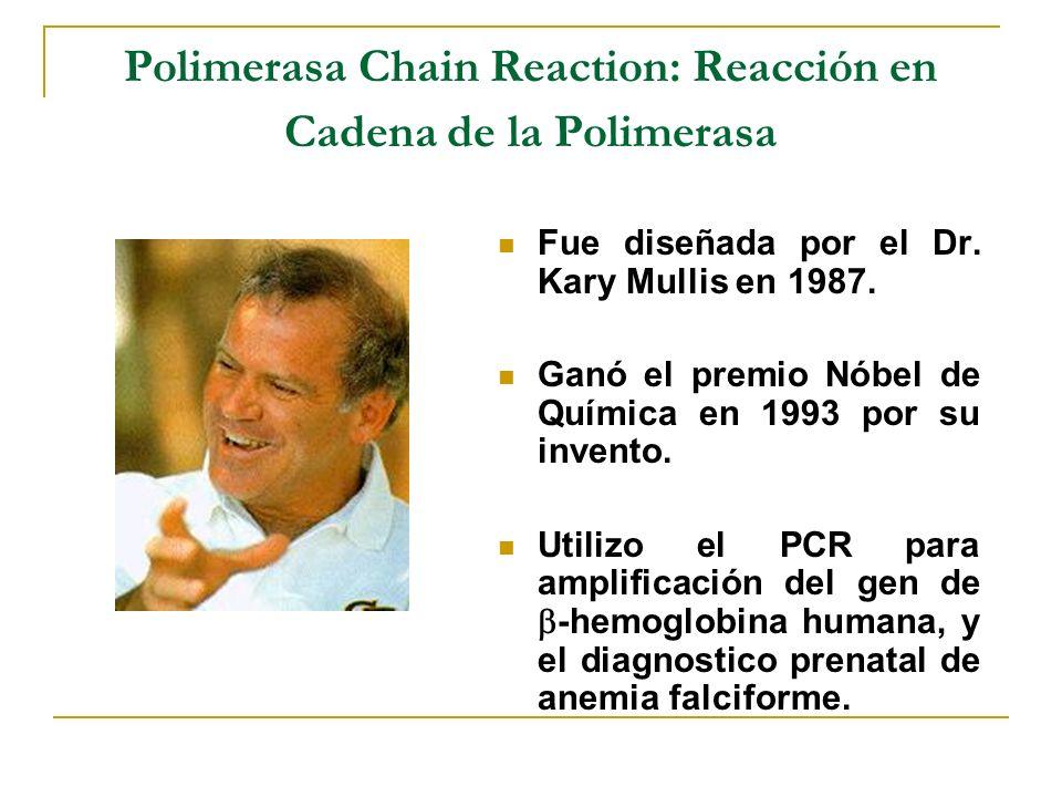 Polimerasa Chain Reaction: Reacción en Cadena de la Polimerasa