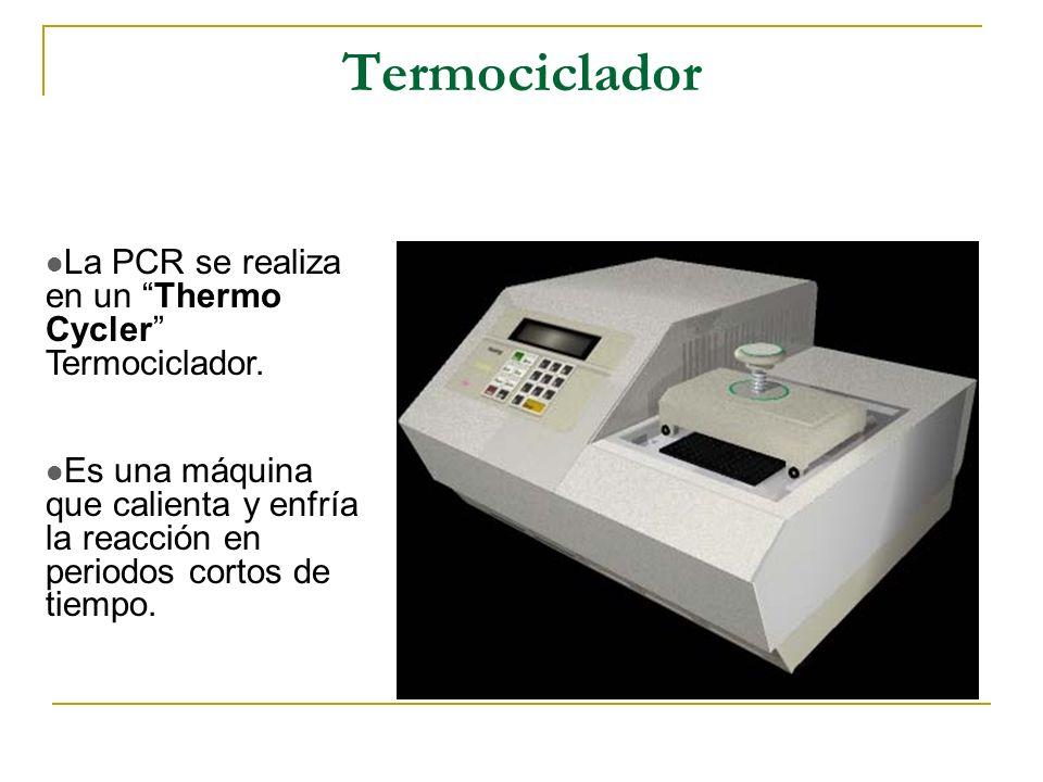 Termociclador La PCR se realiza en un Thermo Cycler Termociclador.