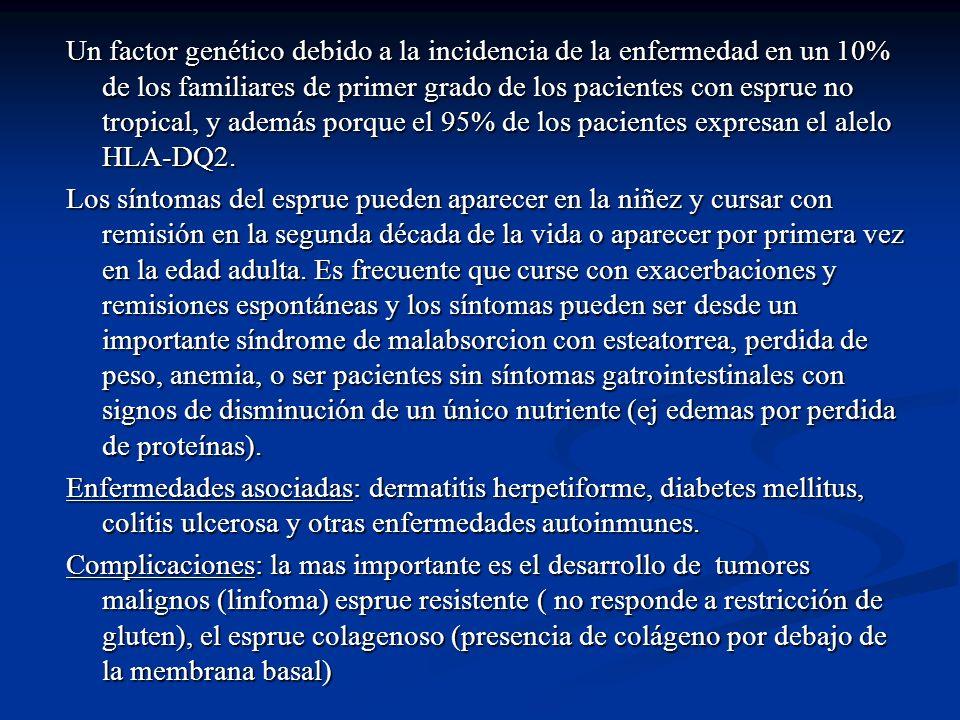 Un factor genético debido a la incidencia de la enfermedad en un 10% de los familiares de primer grado de los pacientes con esprue no tropical, y además porque el 95% de los pacientes expresan el alelo HLA-DQ2.