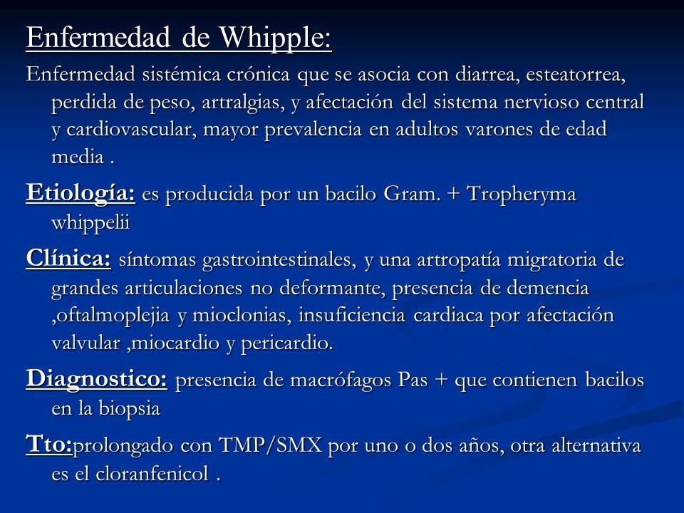 Enfermedad de Whipple: