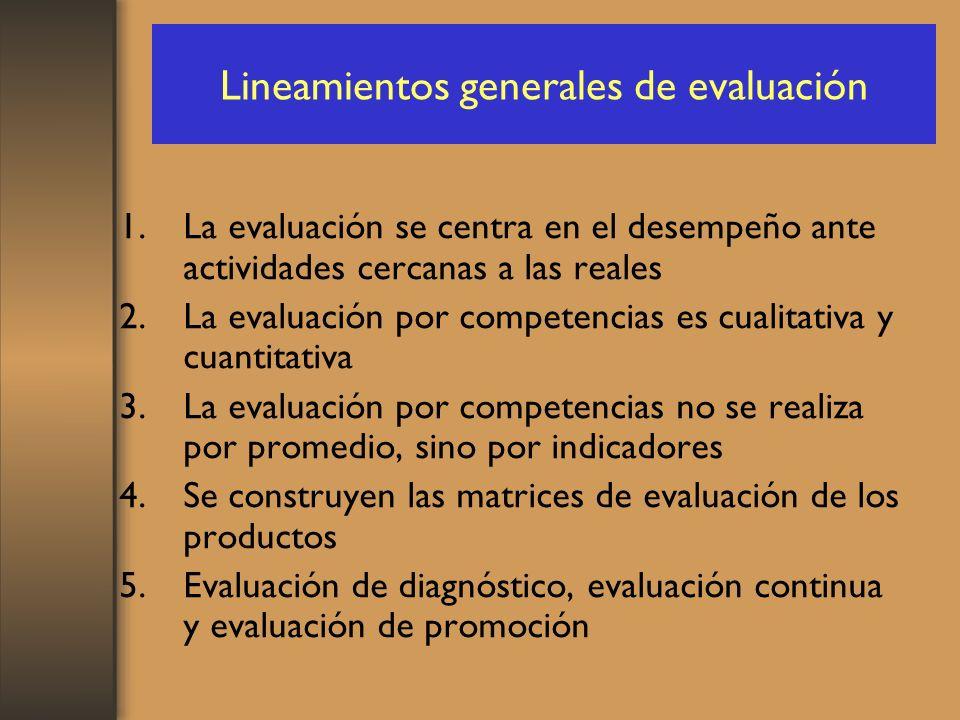Lineamientos generales de evaluación