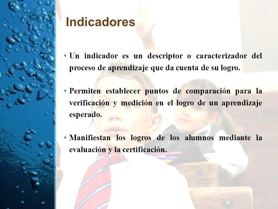 Indicadores Un indicador es un descriptor o caracterizador del proceso de aprendizaje que da cuenta de su logro.