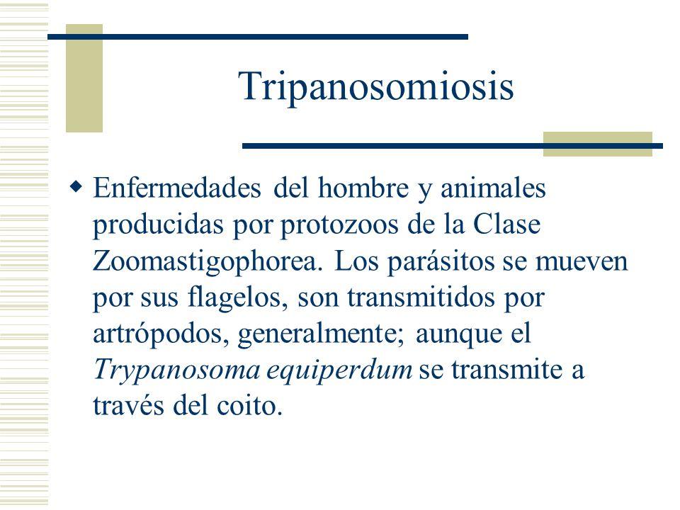 Tripanosomiosis
