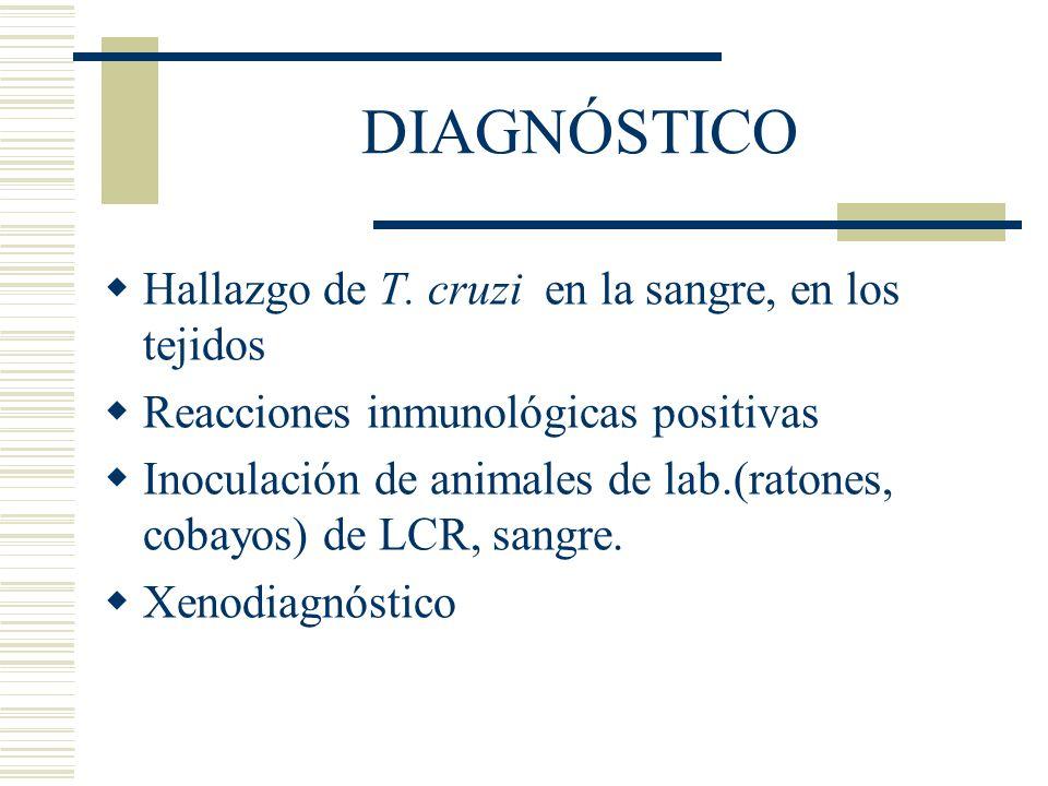 DIAGNÓSTICO Hallazgo de T. cruzi en la sangre, en los tejidos