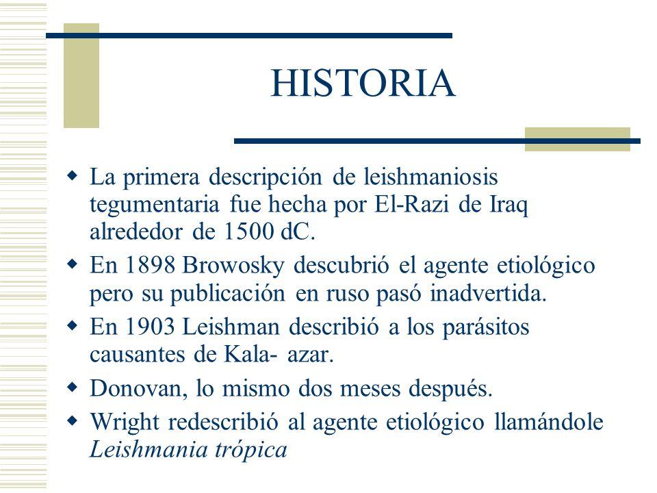HISTORIA La primera descripción de leishmaniosis tegumentaria fue hecha por El-Razi de Iraq alrededor de 1500 dC.