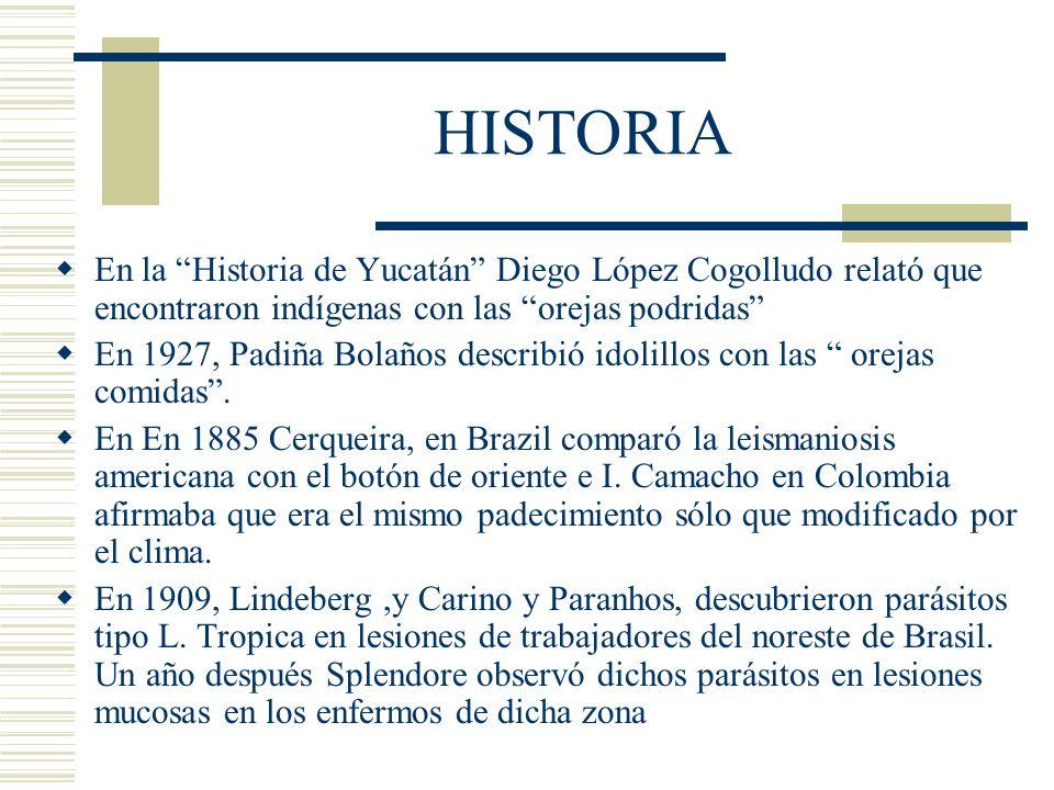 HISTORIA En la Historia de Yucatán Diego López Cogolludo relató que encontraron indígenas con las orejas podridas