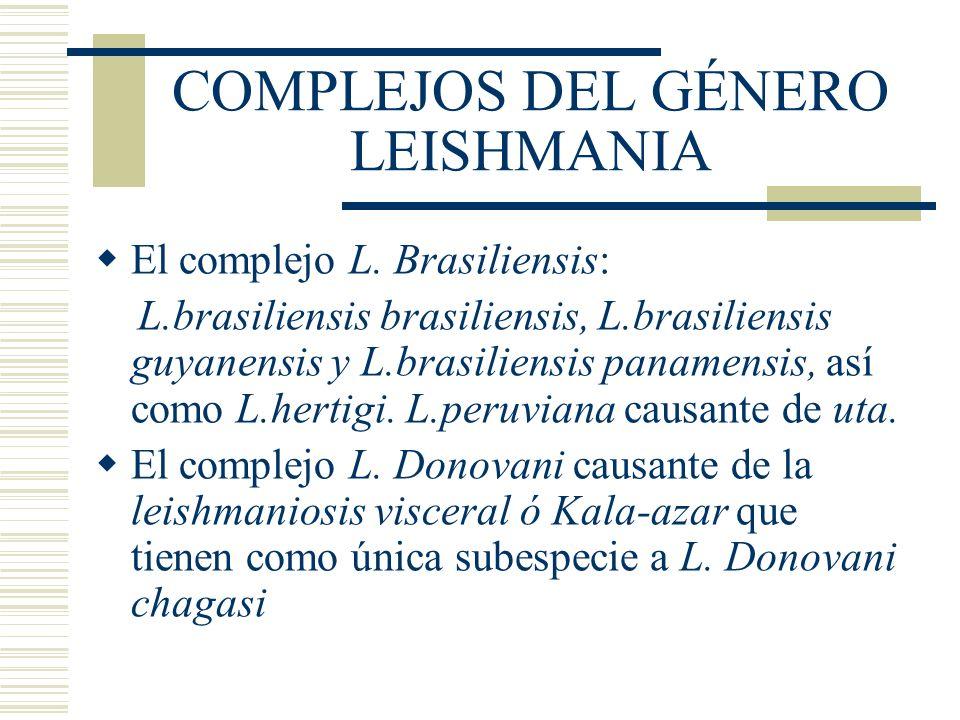 COMPLEJOS DEL GÉNERO LEISHMANIA
