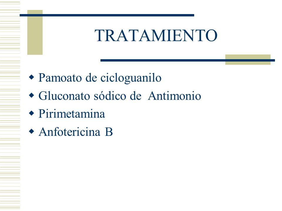 TRATAMIENTO Pamoato de cicloguanilo Gluconato sódico de Antimonio