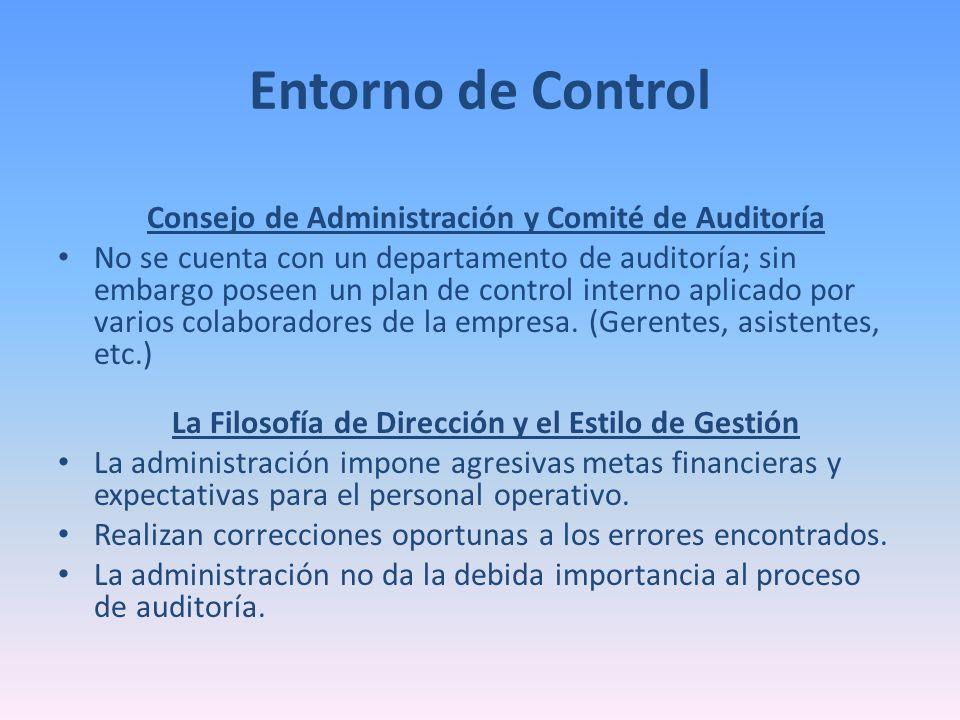 Entorno de Control Consejo de Administración y Comité de Auditoría