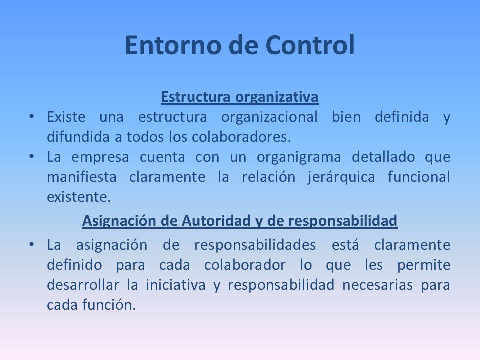 Estructura organizativa Asignación de Autoridad y de responsabilidad