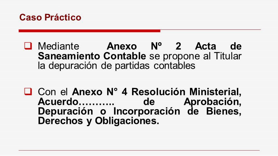 Caso Práctico Mediante Anexo Nº 2 Acta de Saneamiento Contable se propone al Titular la depuración de partidas contables.