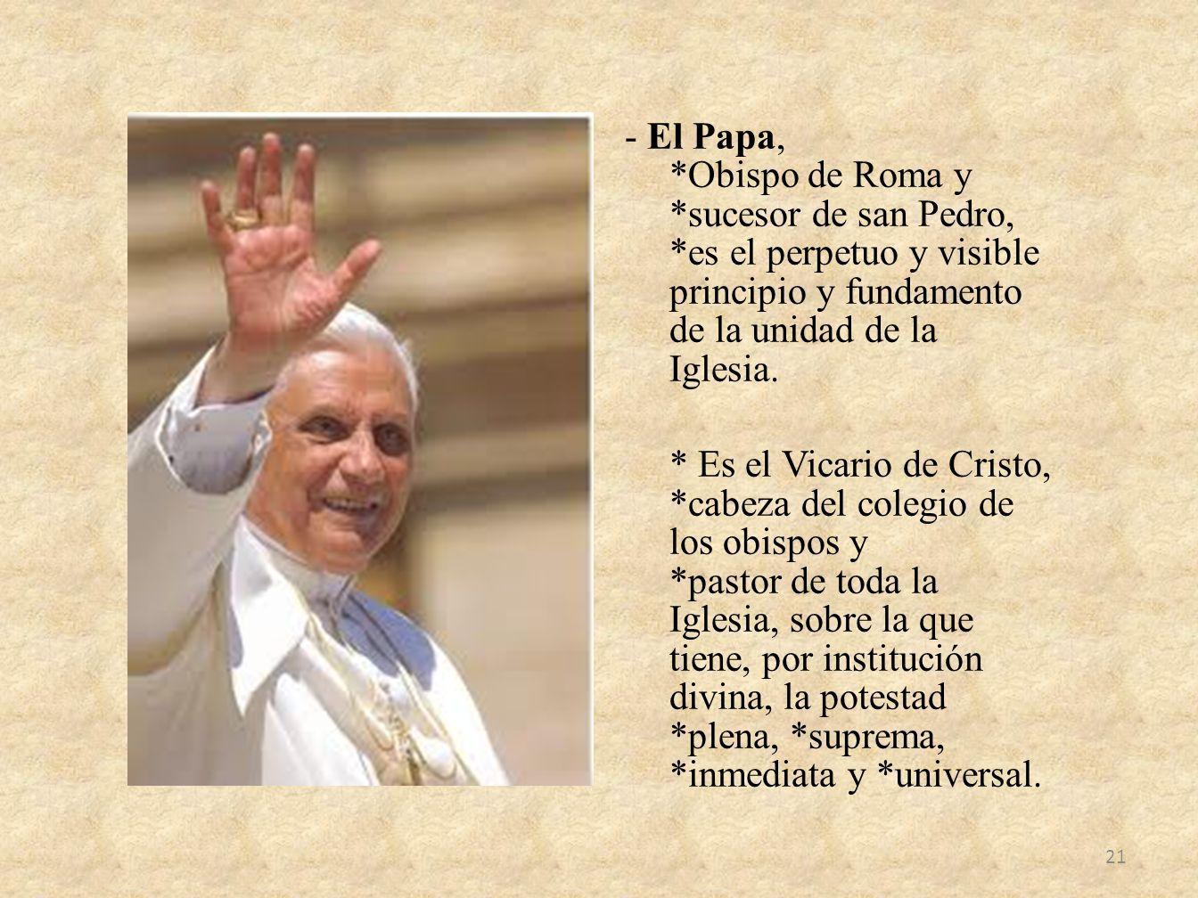 - El Papa,. Obispo de Roma y. sucesor de san Pedro,