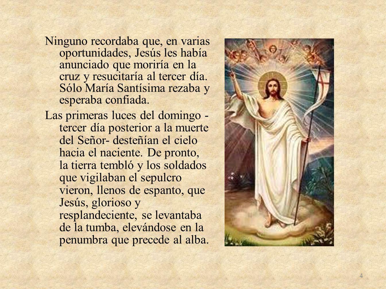 Ninguno recordaba que, en varias oportunidades, Jesús les había anunciado que moriría en la cruz y resucitaría al tercer día.