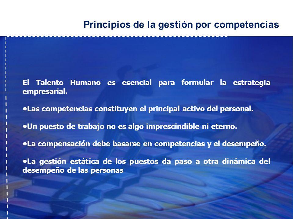 Principios de la gestión por competencias
