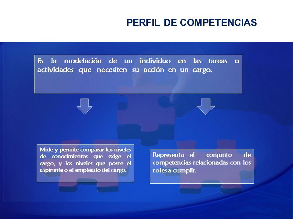 PERFIL DE COMPETENCIAS