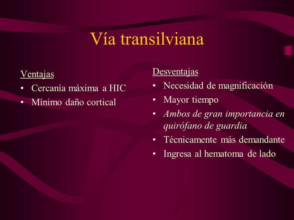 Vía transilviana Desventajas Ventajas Necesidad de magnificación